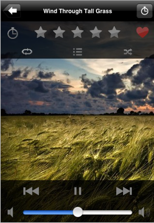 screenshot of the Ambiance app on an iPhone